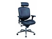 Leather executive chairHONOR1-01-H